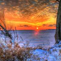 Sunset over the ice between trees in Madison, Wisconsin