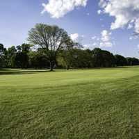 The Green on Grant Park Golf Course