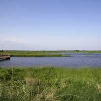 Landscape with marsh and boardwalk