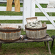 Cloth Washing Buckets in Old World Wisconsin