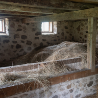 Hay Stored up in the feeding barn