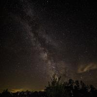 Bright Milky Way above the treetops at Meadow Valley