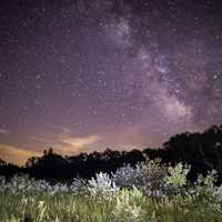 Milky Way over the trees at Meadow Valley