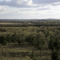 Trees and forest and farm landscape in Quincy Bluff, Wisconsin