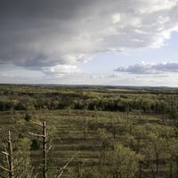 Trees over the landscape from Quincy Bluff, Wisconsin with clouds