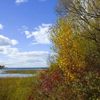 Fall colors of the peninsula at Peninsula State Park, Wisconsin