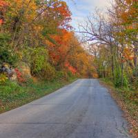Autumn road at Perrot State Park, Wisconsin