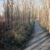 Wooden Walkway at Pike Lake State Park