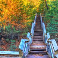 Staircase to the top at Roche-A-Cri State Park