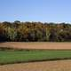 Farm and Autumn Treeline with fall foliage in Wisconsin