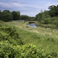 Grassfield landscape and bridge at Camrock County Park