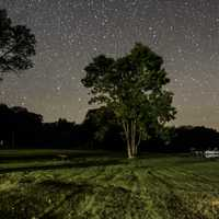 Landscape, tree, and stars at Blackhawk Lake Recreation Area, Wisconsin