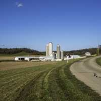 Landscape with farm and Silos in Wisconsin