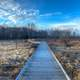 Landscapes - Boardwalk at Beckman's Mill, Wisconsin