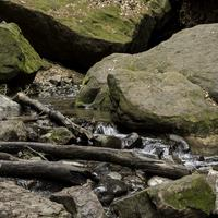 Logs, rocks, and creek at Parfrey's Glen, Wisconsin