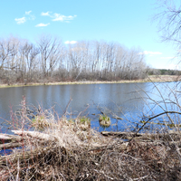 River Scenery at Camrock County Park