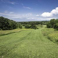 Scenic Landscape of grassy Trail at Camrock County Park