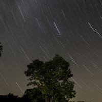 Star Trails Above the Trees at Blackhawk Lake, Wisconsin