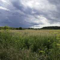 Stormy Clouds over the Grassland and Marsh at Goose Lake Wildlife Area