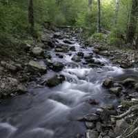 Time-Lapse of the flowing river rapids in Baxter's Hollow, Wisconsin