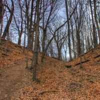 Photo of the hill at Pewits Nest Natural Area, Wisconsin