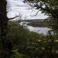 Wisconsin River landscape through the trees at Ferry Bluff