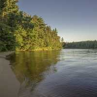 Trees, Forest, and shoreline on the Wisconsin River