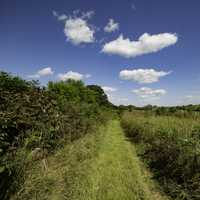Hiking Trail into the Prairie