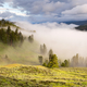 Fog in the Yellowstone Valley