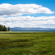 Grassland by Yellowstone Lake with clouds and sky