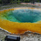 Morning Glory Pool at Yellowstone National Park, Wyoming