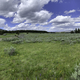 Panoramic green meadow under sky and clouds