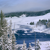 Winter landscape scene in Yellowstone National Park, Wyoming