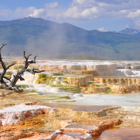 Yellowstone landscape near Mammoth Springs in Wyoming