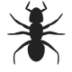 Ant Icon Vector Clipart