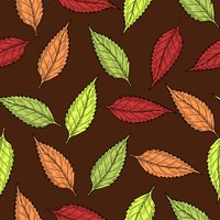 Autumn Leaves Vector Clipart