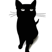 Black Cat Vector Graphic