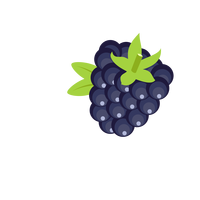 Blackberry vector clipart
