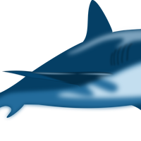 Blue Shark Vector Art