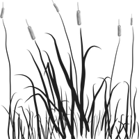 Cat Tails in the Marsh vector file