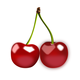 Cherries Vector Clipart