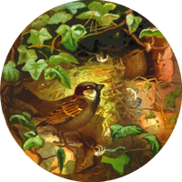 Circular Illustration of Sparrow nesting in a brick house vector clipart