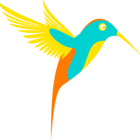 Colibri Colorful Bird vector clipart