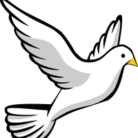 Dove Vector Clipart