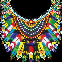 Feathered Coat of Many Colors Vector Graphic