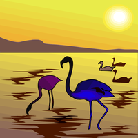 Flamingo under the sunset vector clipart