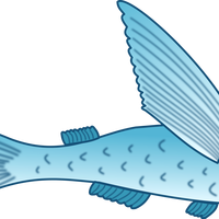 Flying Fish Vector Clipart