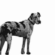 Great Dane Vector Clipart