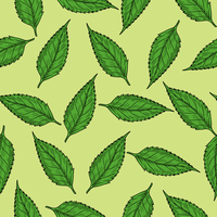 Green Leaves Pattern vector clipart