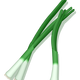 Green Onions Vector Clipart